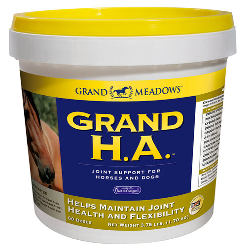 View larger image of Grand H.A. Joint Supplement for Horses and Dogs