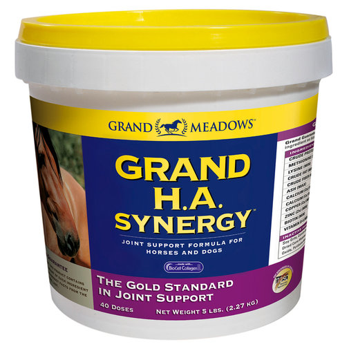 View larger image of Grand H.A. Synergy Joint Support Formula for Horses & Dogs
