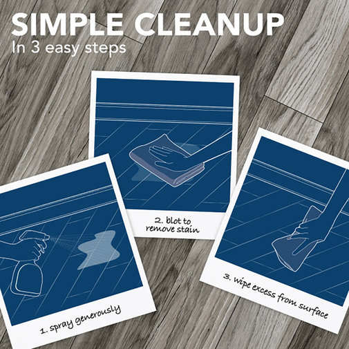 View larger image of Hard Floor Stain & Odor Remover