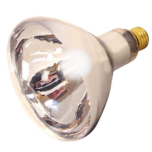 View larger image of Heat Lamp 125W Bulb