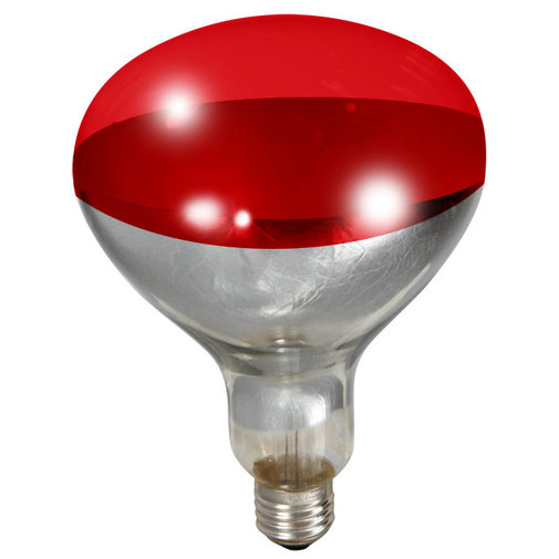 View larger image of Heat Lamp 250W Bulb