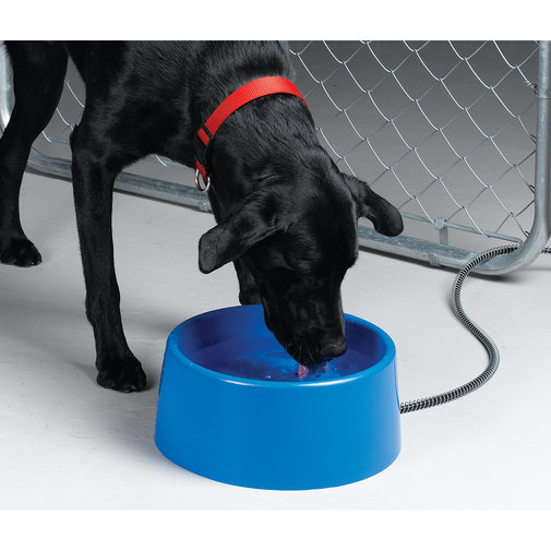 View larger image of Heated Plastic Pet Bowl