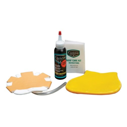 View larger image of Hoof Care Kit