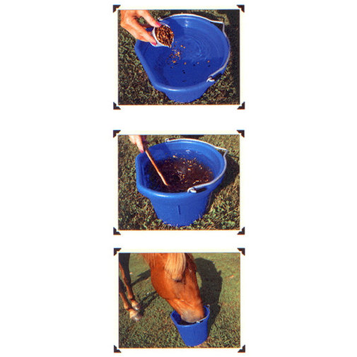 View larger image of Horse Quencher
