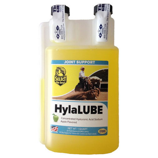 View larger image of HylaLUBE Joint Supplement for Horses and Dogs