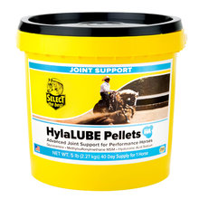 HylaLUBE Pelleted Joint Supplement For Horses