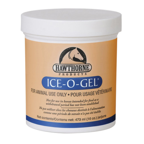 View larger image of Ice-O-Gel Horse Liniment