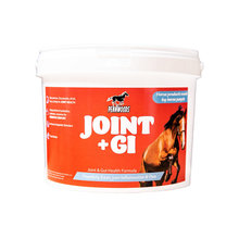 Joint Plus Joint Supplement for Horses