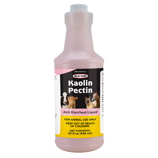 View larger image of Kaolin Pectin Solution