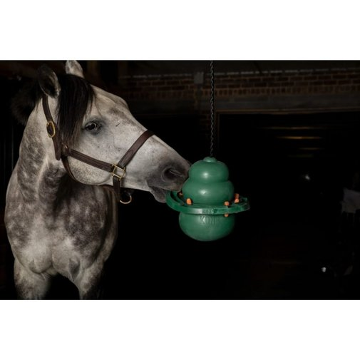 View larger image of KONG Equine Hanging Kit with Treat Ring