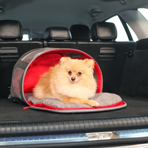 View larger image of KONG Travel 2-In-1 Pet Carrier & Mat