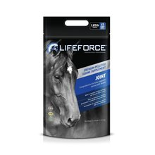 Lifeforce Joint Equine Supplement