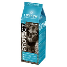 LIFEFLINE Protect Colostrum Supplement for Calves