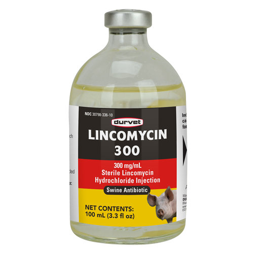 View larger image of Lincomycin 300 Swine Injectable