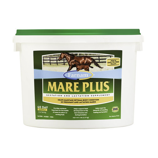View larger image of Mare Plus Gestation and Lactation Supplement