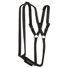 Marking Harness