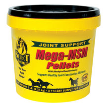 Mega-MSM Horse Joint Supplement