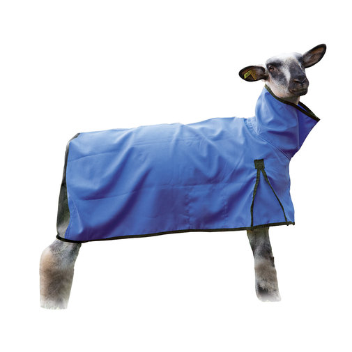 View larger image of Mesh Butt Sheep Blanket