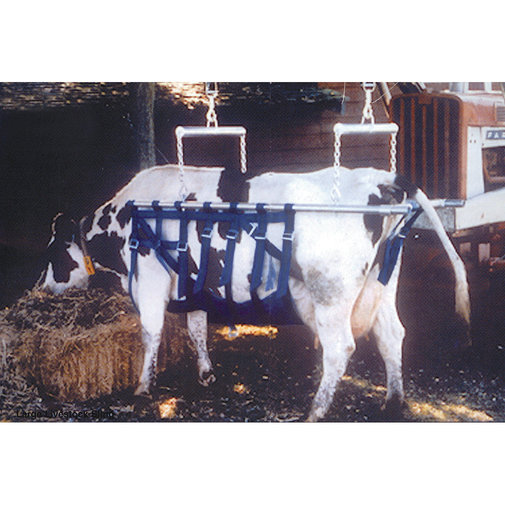 View larger image of Munks Cow Sling