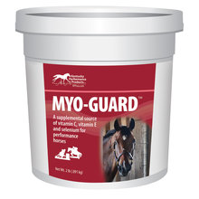 Myo-Guard Supplement for Performance Horses