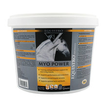 Myo Power Equine Supplement