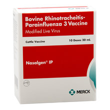Nasalgen IP Cattle Vaccine