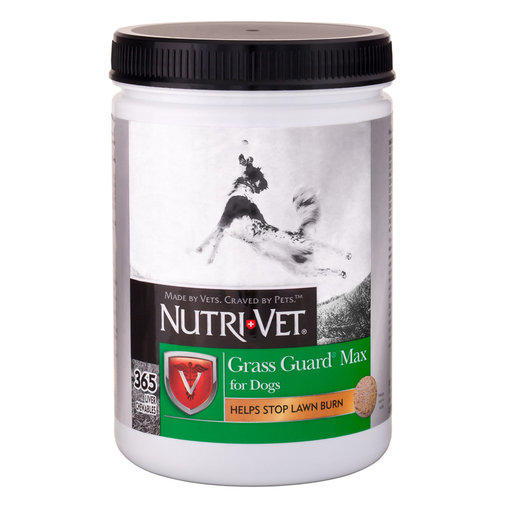 View larger image of Nutri-Vet Grass Guard Max Chewables for Dogs