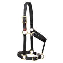 Nylon Breakaway Padded Halter for Horses