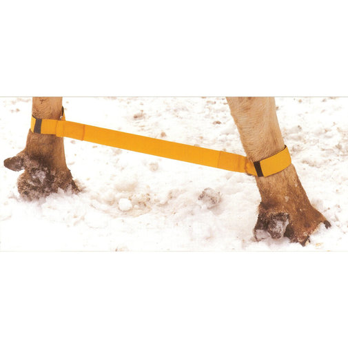 View larger image of Ozzie's Split Gard Safety Hobble for Cattle
