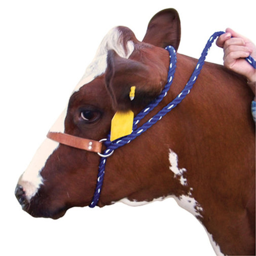 View larger image of Poly Cattle Halter with Leather Nose Band
