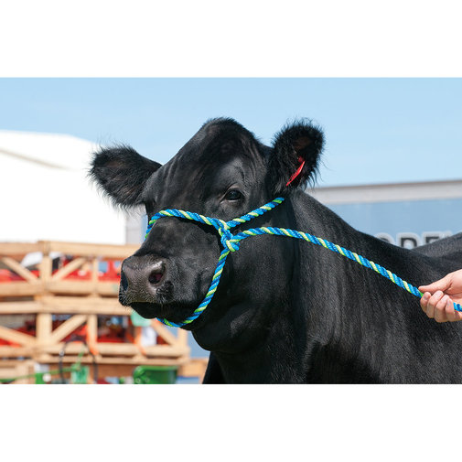 View larger image of Poly Rope Cattle Halter