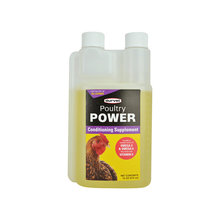 Poultry Power Conditioning Supplement