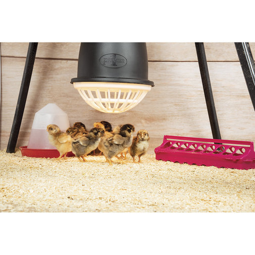 View larger image of Prima Heat Lamp