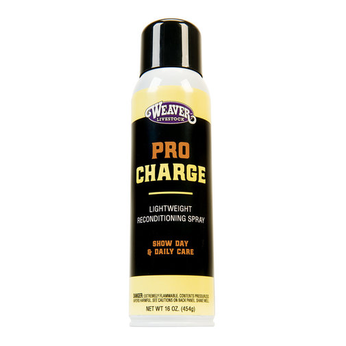 View larger image of ProCharge Reconditioning Spray