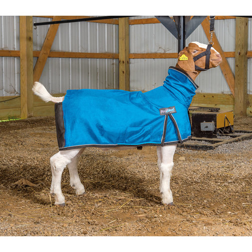 View larger image of ProCool Mesh Goat Blanket