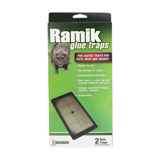 View larger image of Ramik Rat, Mouse and Snake Glue Trap Trays