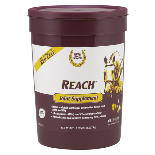 View larger image of Reach Joint Supplement