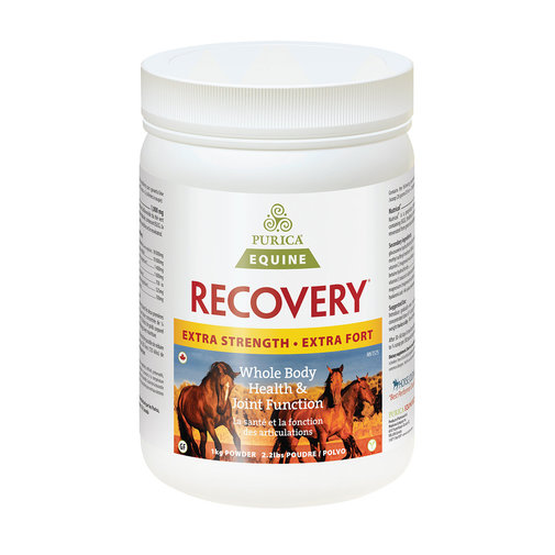 View larger image of Recovery Equine Extra Strength with HA