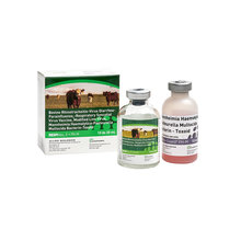 RESPIVax 5 + PH-M Cattle Vaccine