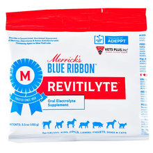 Revitilyte Basic Oral Electrolyte Supplement