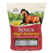 Senior Weight Accelerator
