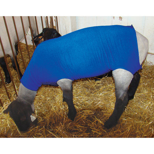 View larger image of Sheep Wether Tube Blanket