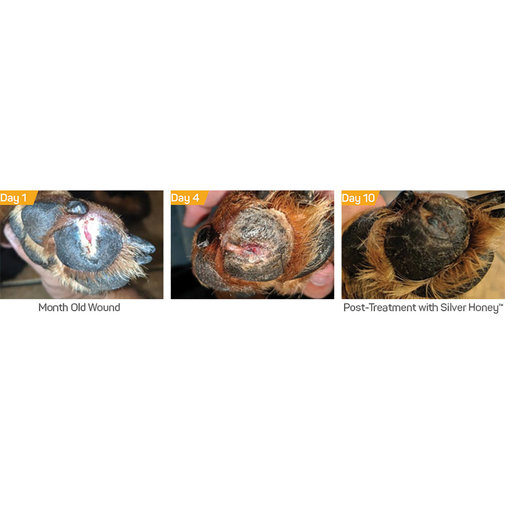 View larger image of Silver Honey Hot Spot & Wound Care
