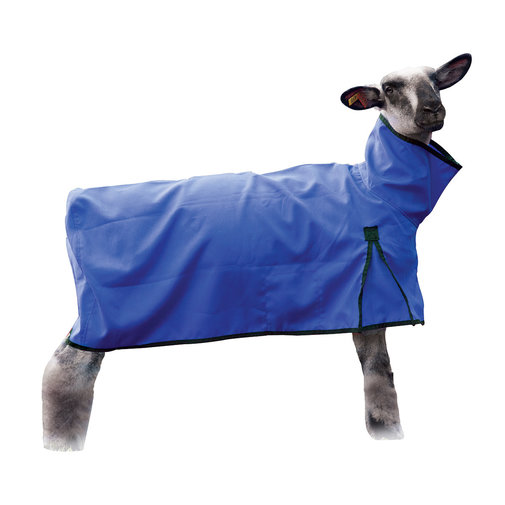 View larger image of Solid Butt Sheep Blanket