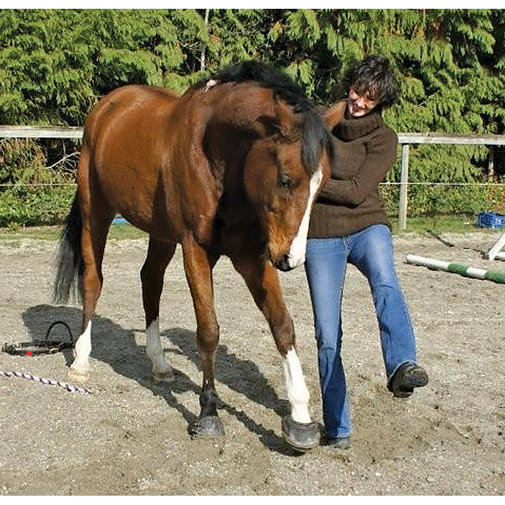 View larger image of Sport Slim Sole Horse Boots