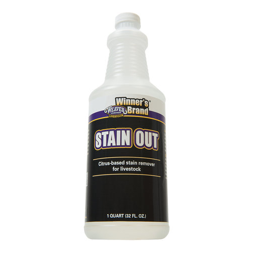 View larger image of Stain Out Stain Remover