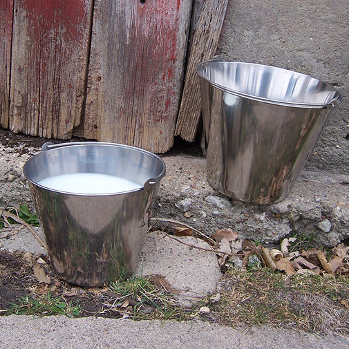View larger image of Stainless Steel Dairy Pail