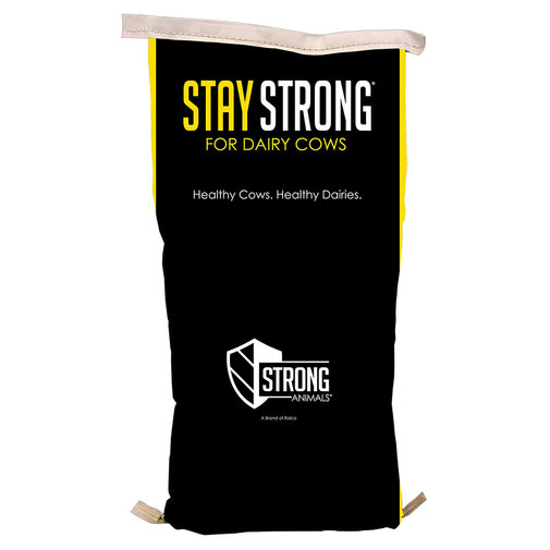 View larger image of Stay Strong for Dairy Cows