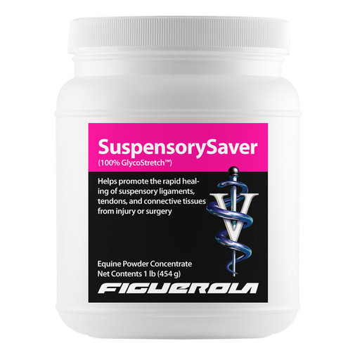 View larger image of SuspensorySaver (100% GlycoStretch) for Horses