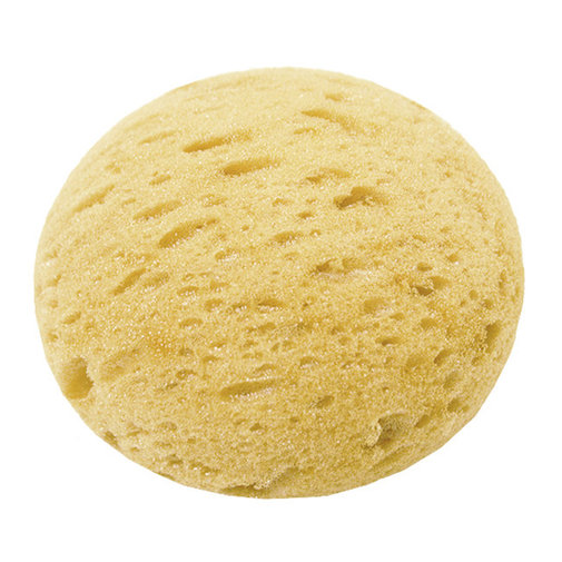 View larger image of Synthetic Tack Sponge